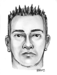 woodside ave attempted rapist